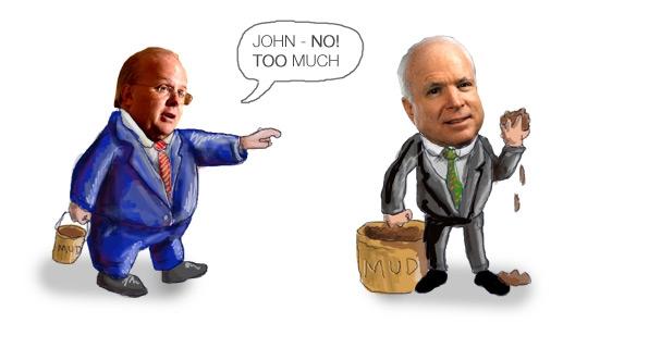 Rove McCain