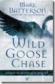 wild-goose-chase
